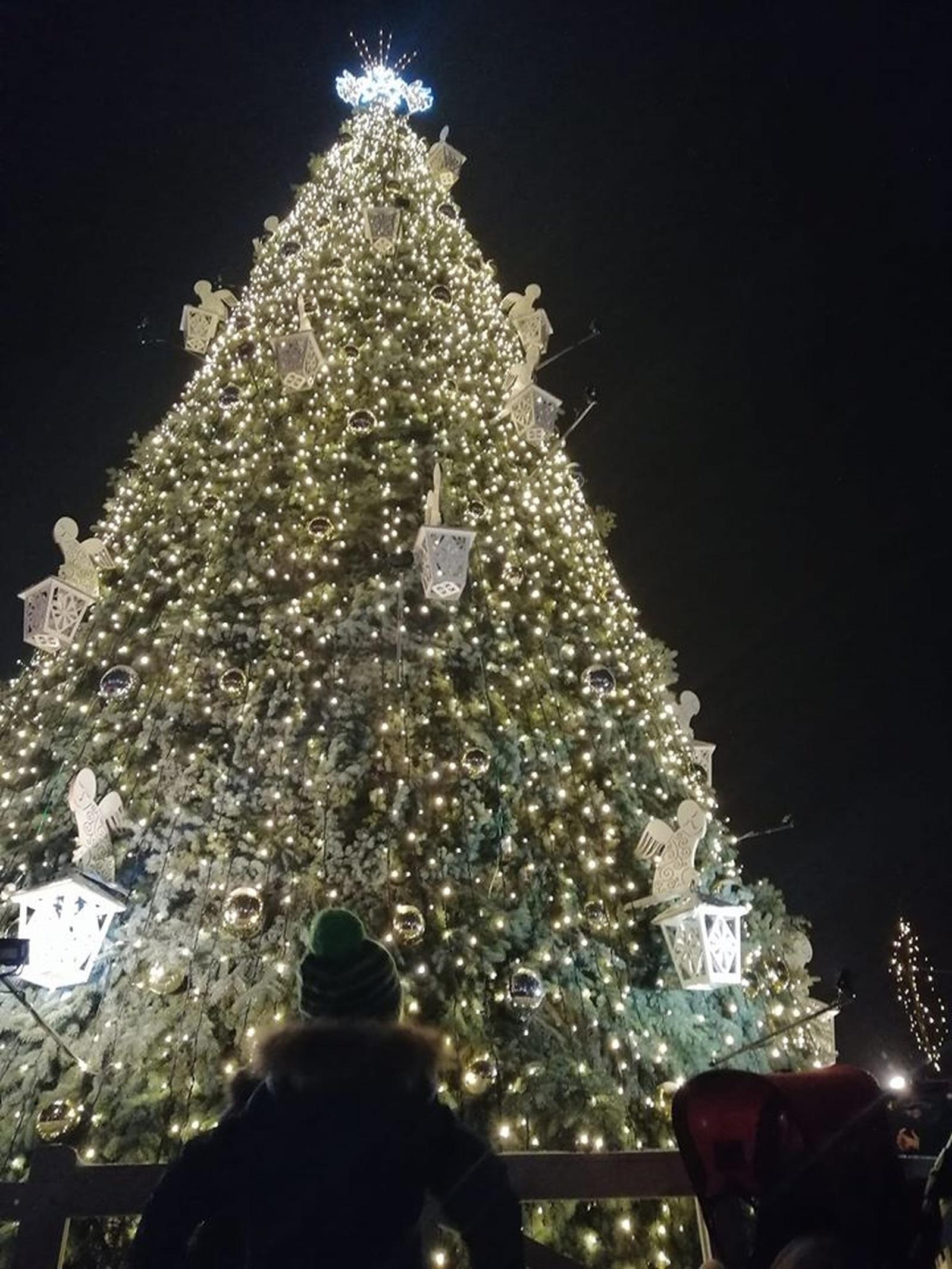 Sutvisko Naujosios Akmenės Kalėdų eglė