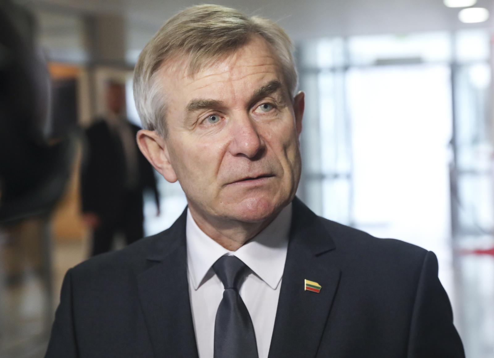 Iš šalies vadovybės sąrašo A. Širinskienė siūlo išbraukti Seimo pirmininką