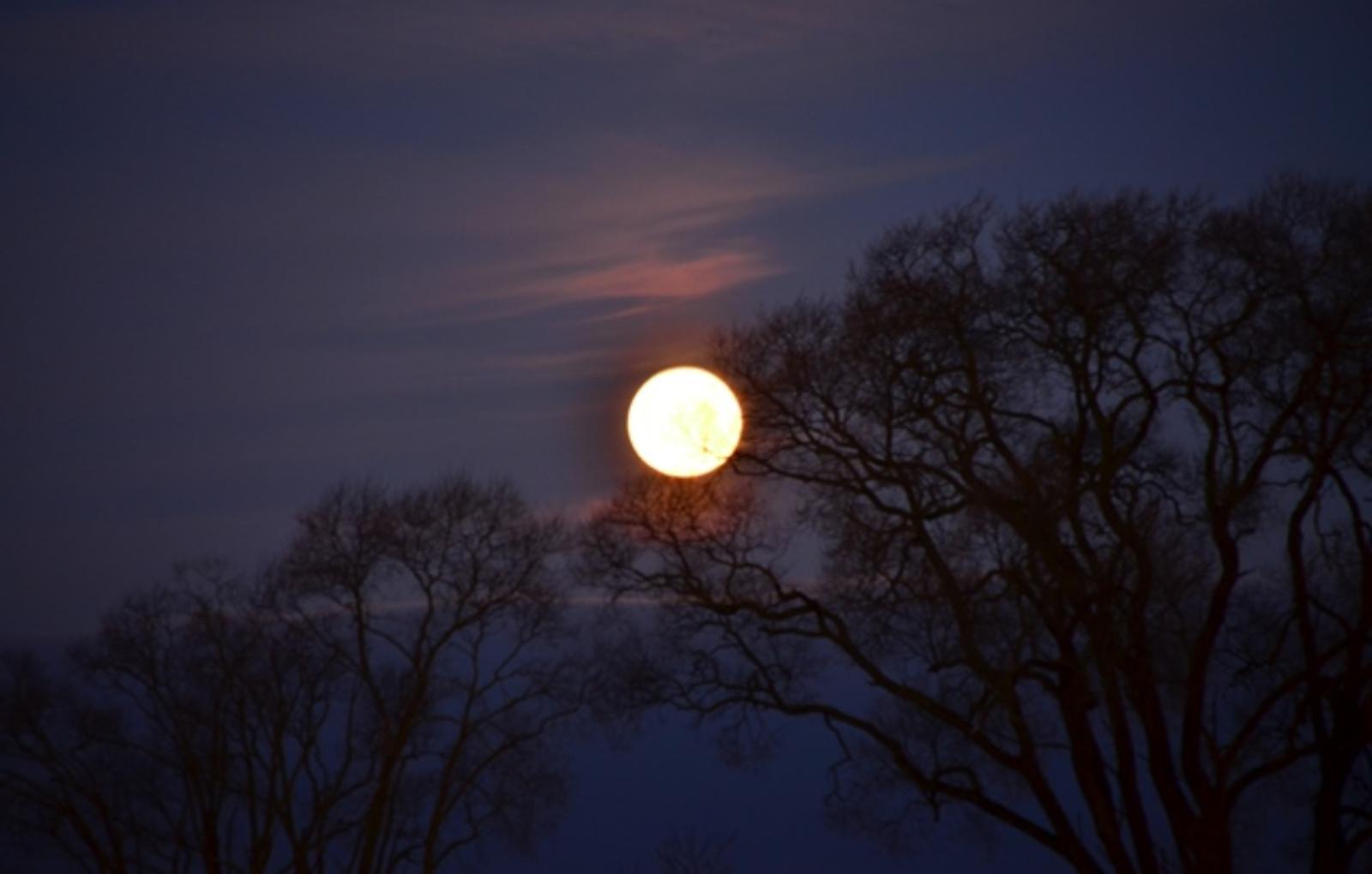 Šią savaitę – pirmoji šių metų pilnatis ir pusšešėlinis Mėnulio užtemimas