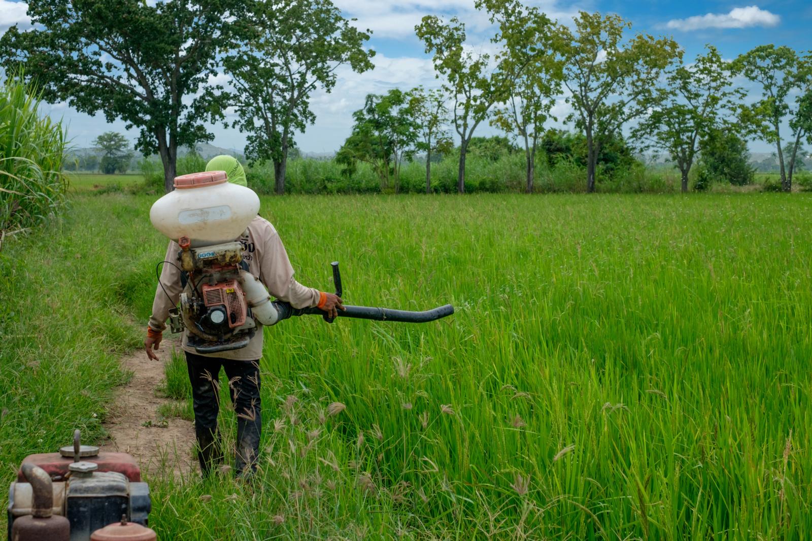 Lietuva kratosi augalų apsaugos klastočių: užkirstas kelias į rinką dar vienam falsifikatui
