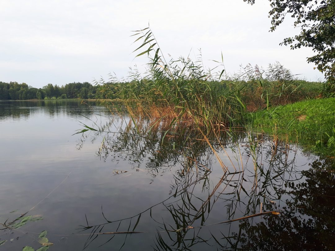 Dingusio vyro Dviragio ežere ieško narai