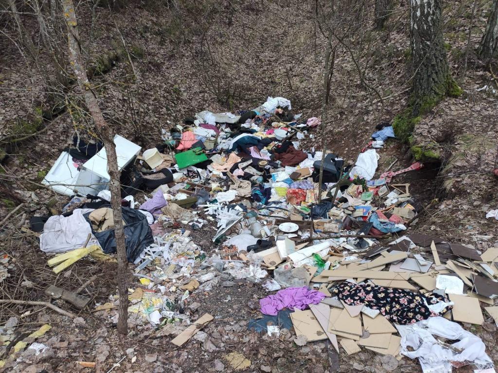 Kauno rajono draustinyje apsilankę miškininkai neteko žado: ieškojo vienų pažeidėjų, aptiko kitus