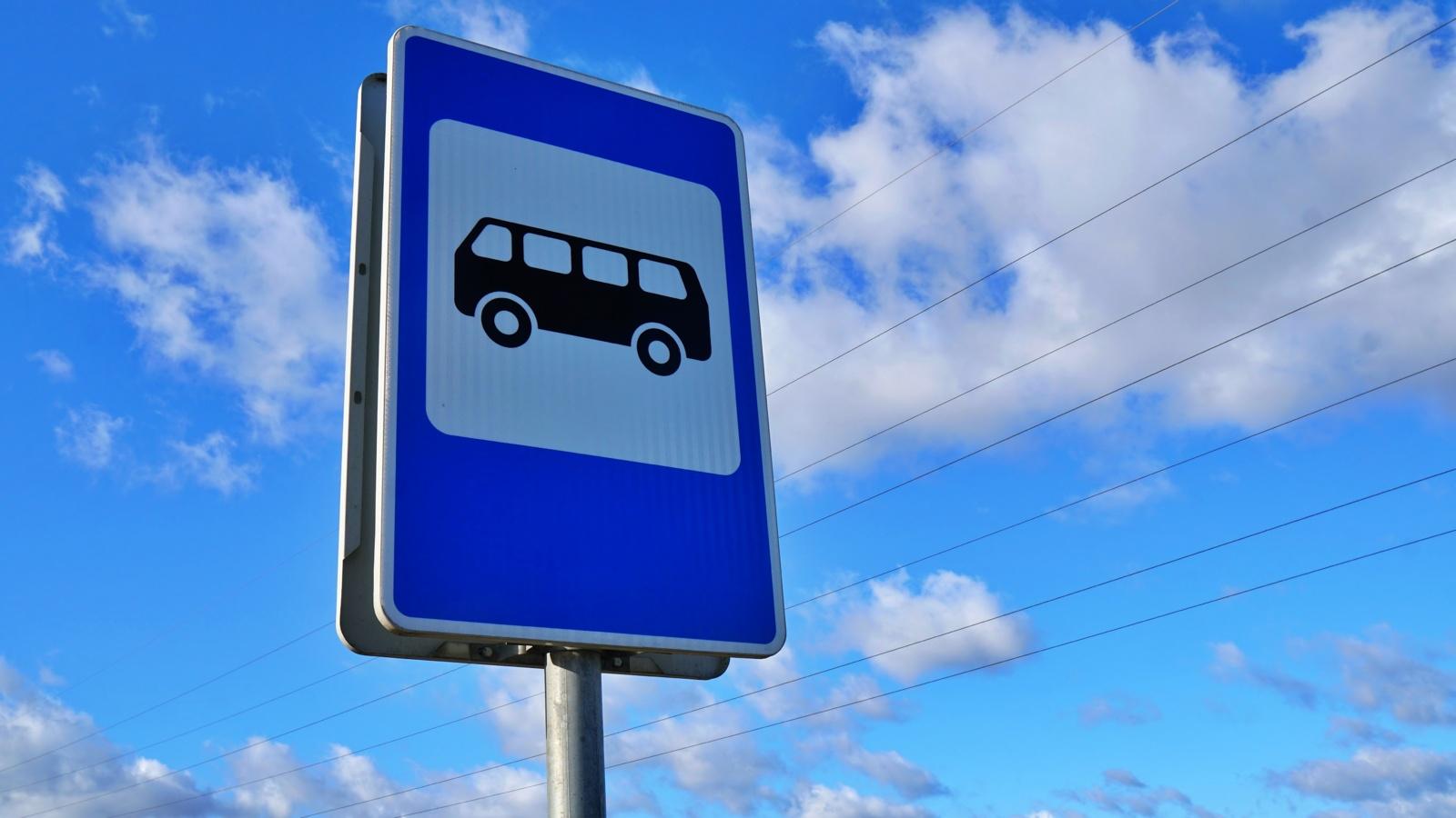 Autobusų reisai atsinaujina per lėtai