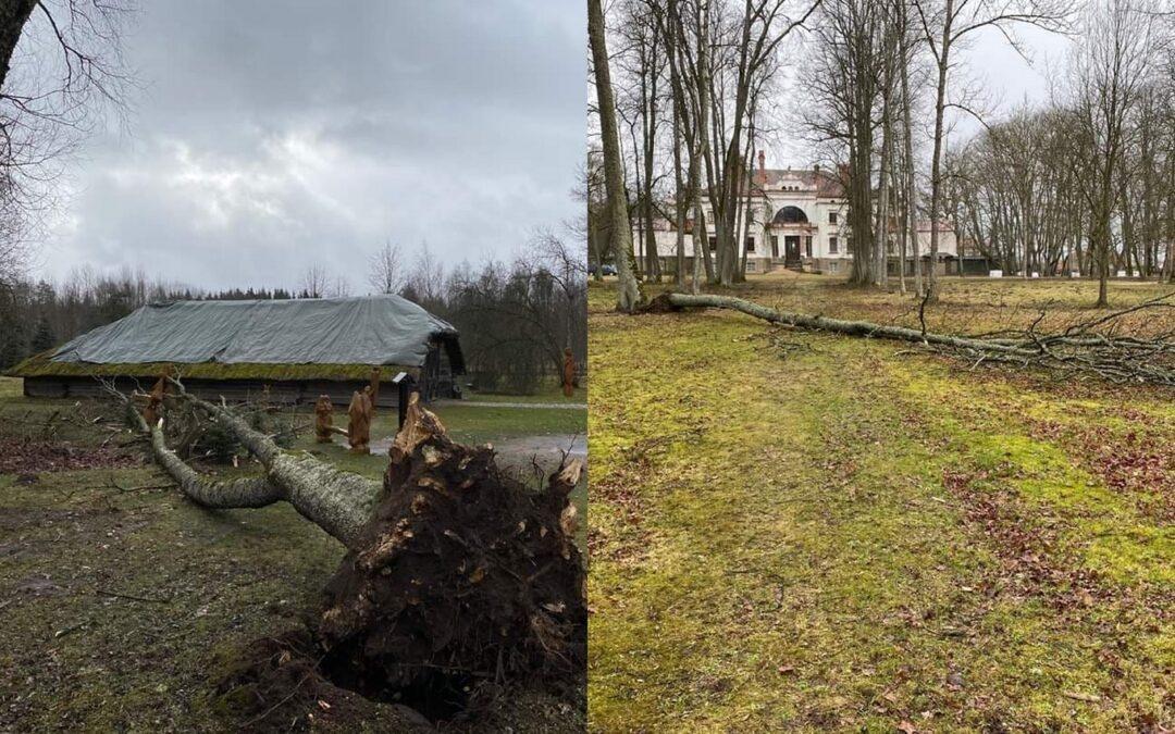"""Uraganas """"Laura"""" neaplenkė Rokiškio"""