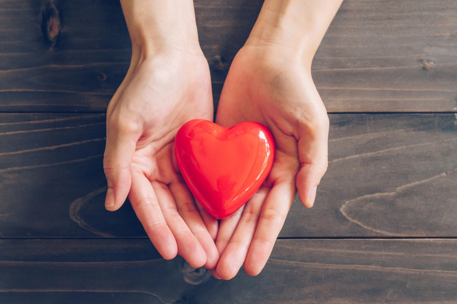 Trys didžiausi žmogaus širdies lobiai