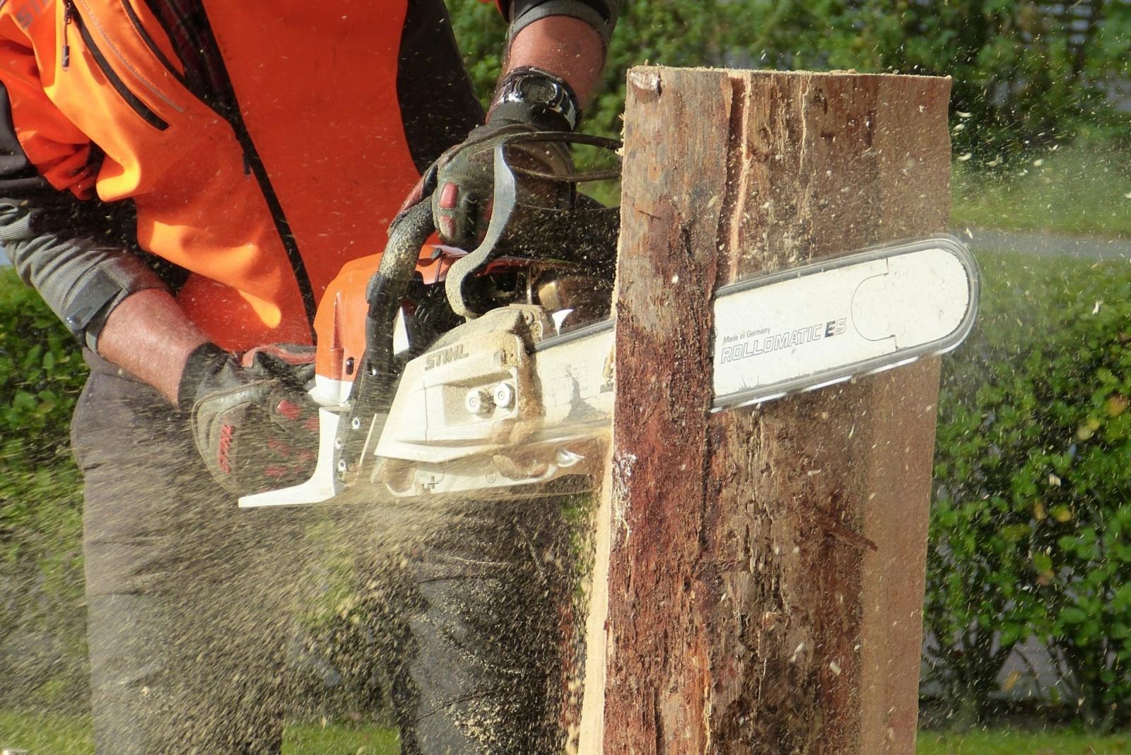 Širvintų mieste ir rajone bus tvarkomi kapinių medžiai