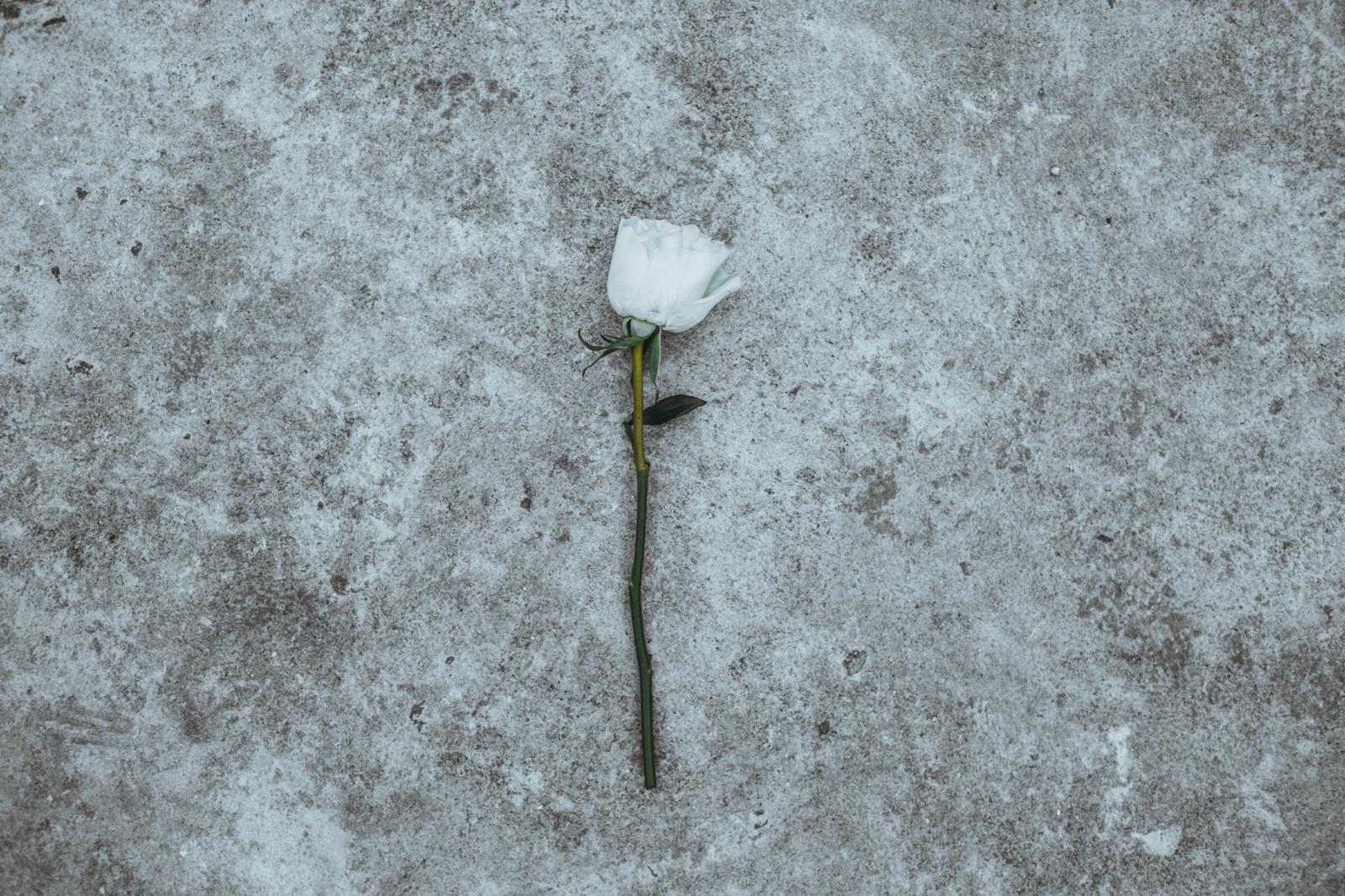 Ministerija atnaujino taisykles dėl mirusiųjų, kurie sirgo COVID-19, laidojimo