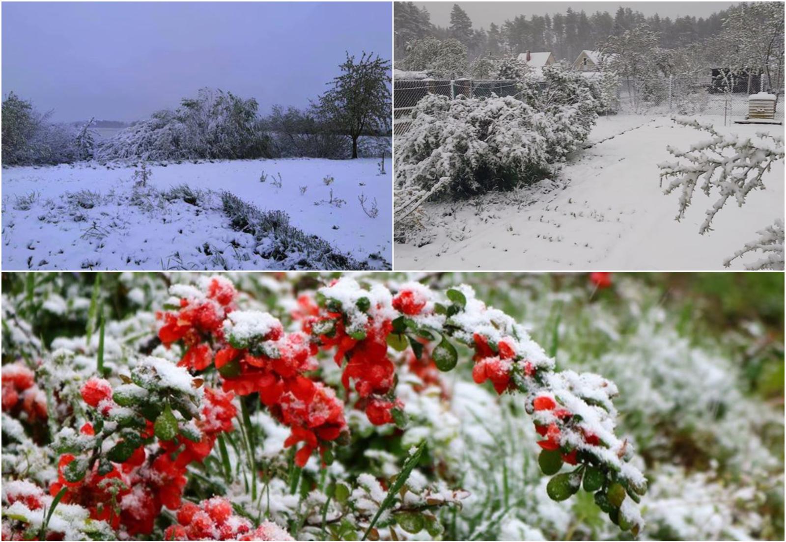 Neįtikėtinos orų permainos: Lietuvą nuklojo balta sniego paklodė