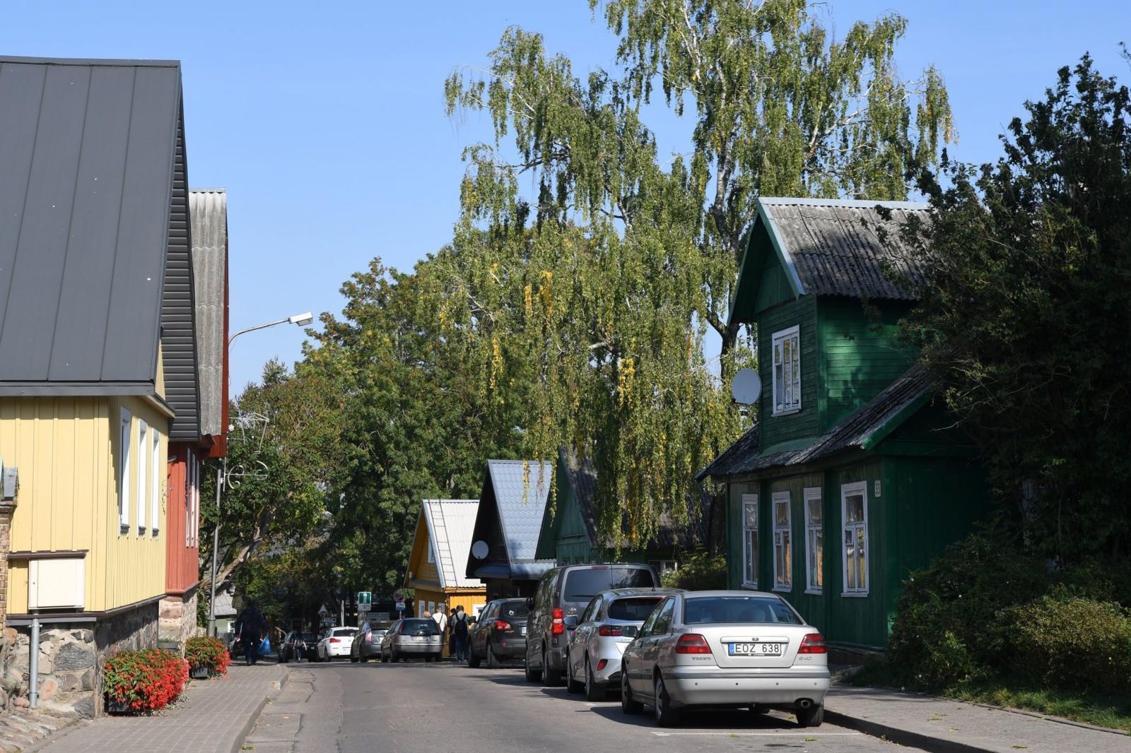 Kaip šią vasarą bus apželdintos Vytauto ir Karaimų gatvės?