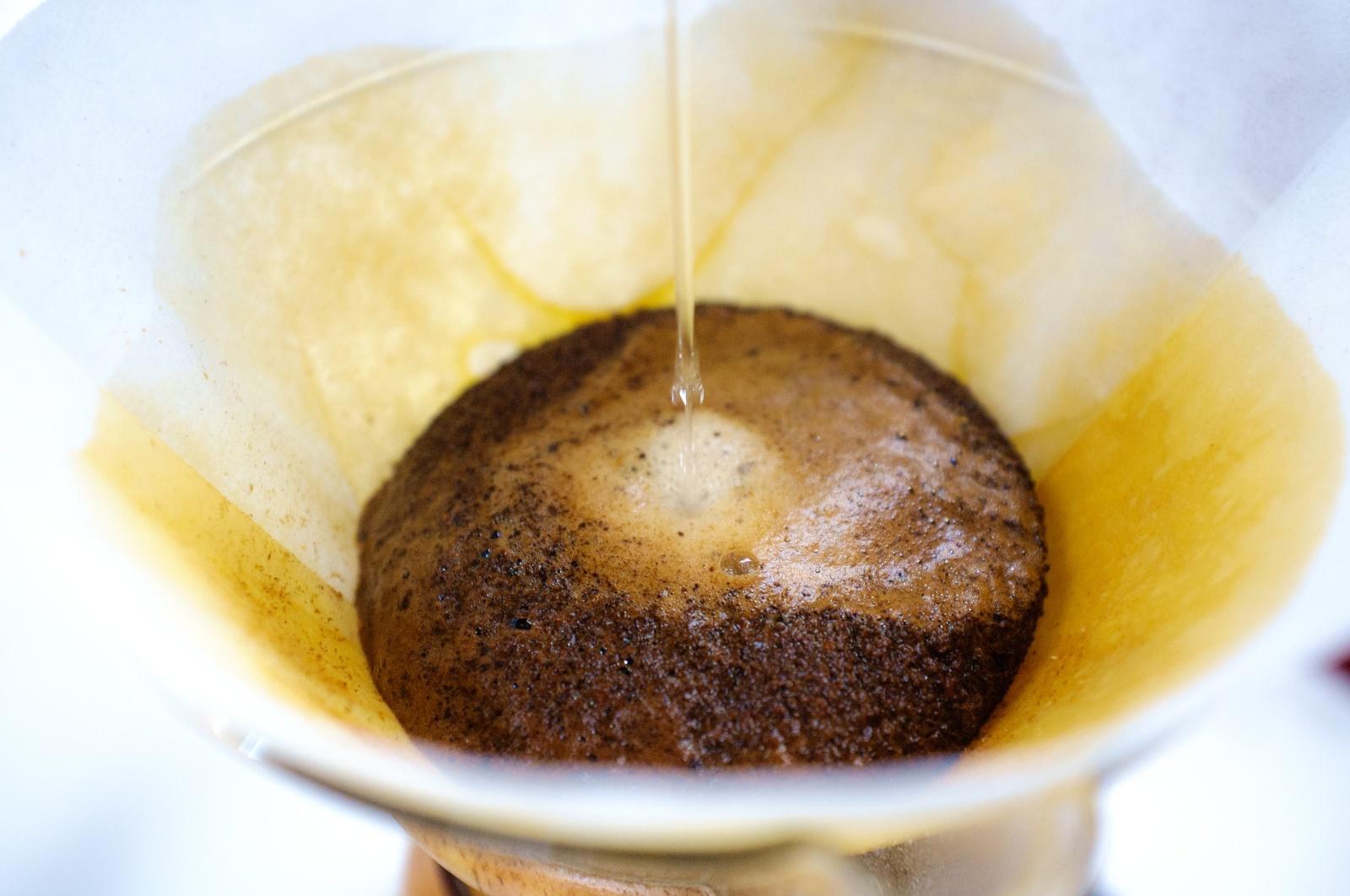 Neišmeskite kavos tirščių: jie tręšia augalus ir atbaido kenkėjus