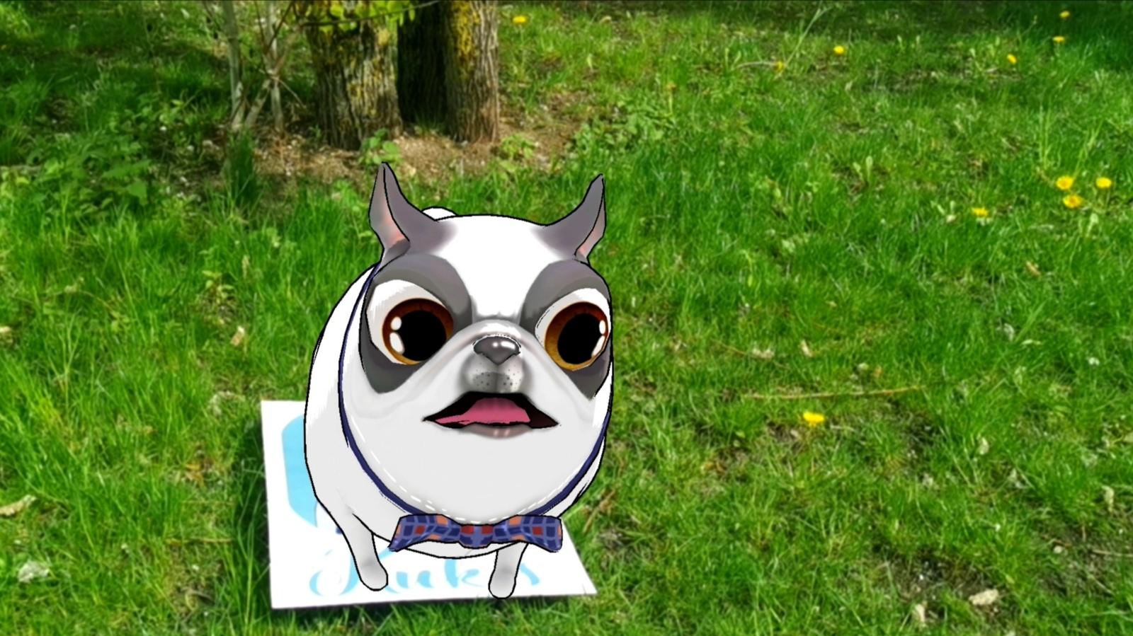 Visą birželio mėnesį kviečia ieškoti šuniukų Bernardinų sode