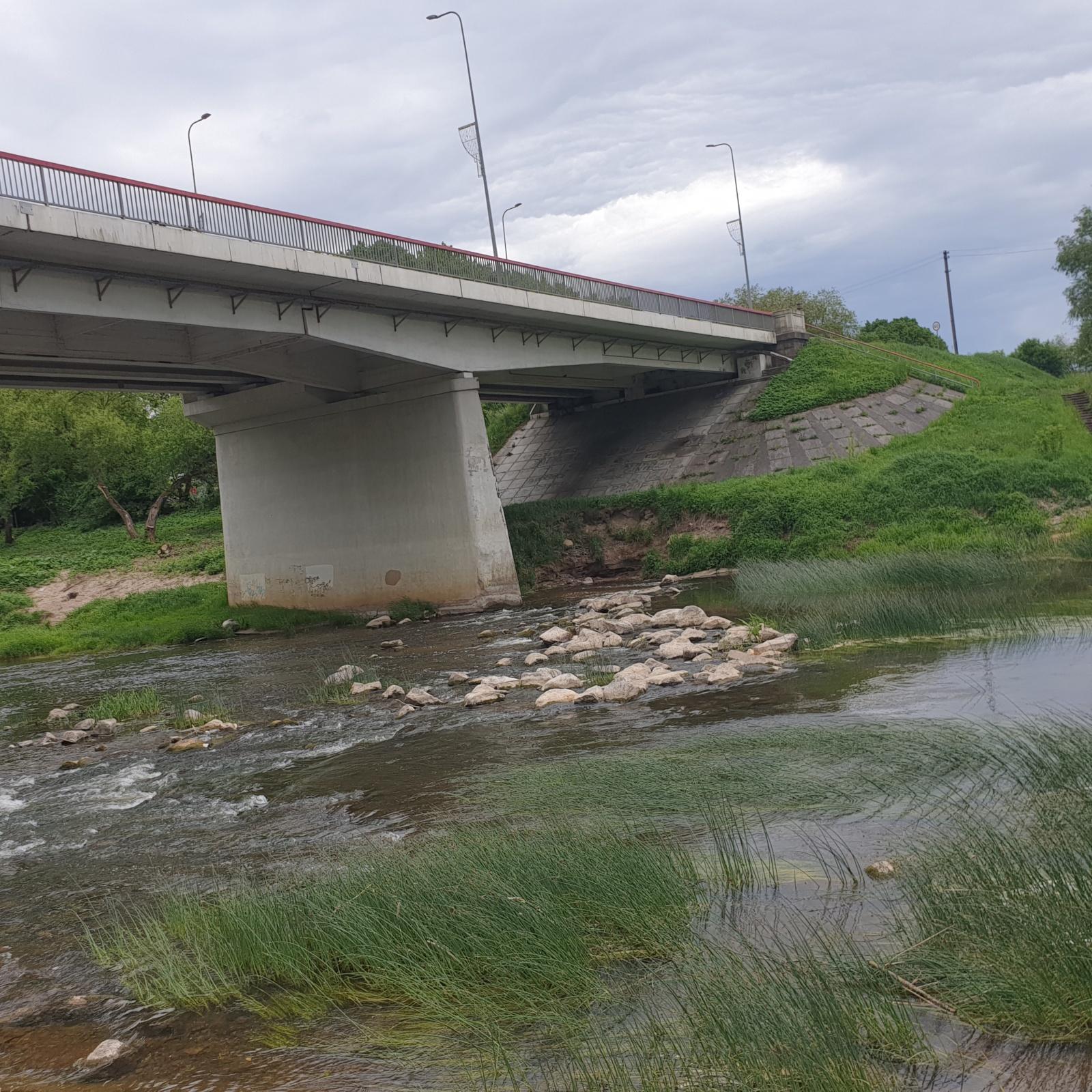 Ištirtas penkių Tauragės maudyklų vanduo