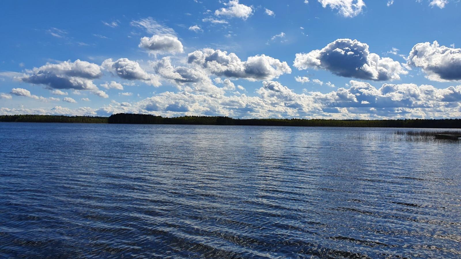 Visagine atliekami ežero vandens kokybės tyrimai
