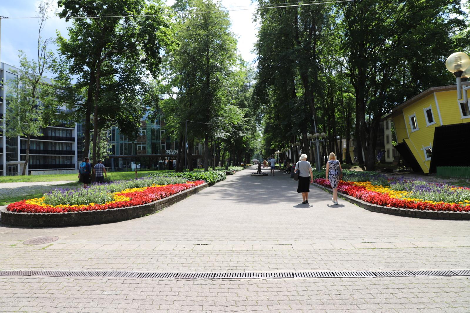 Vilniaus alėja bus atnaujinta iš pagrindų: pradedami projektavimo darbai