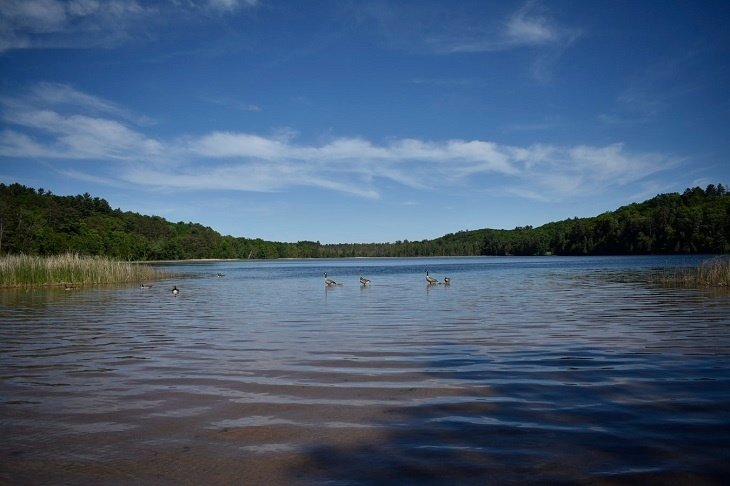 Atlikti Telšių rajono maudyklų vandens kokybės tyrimai