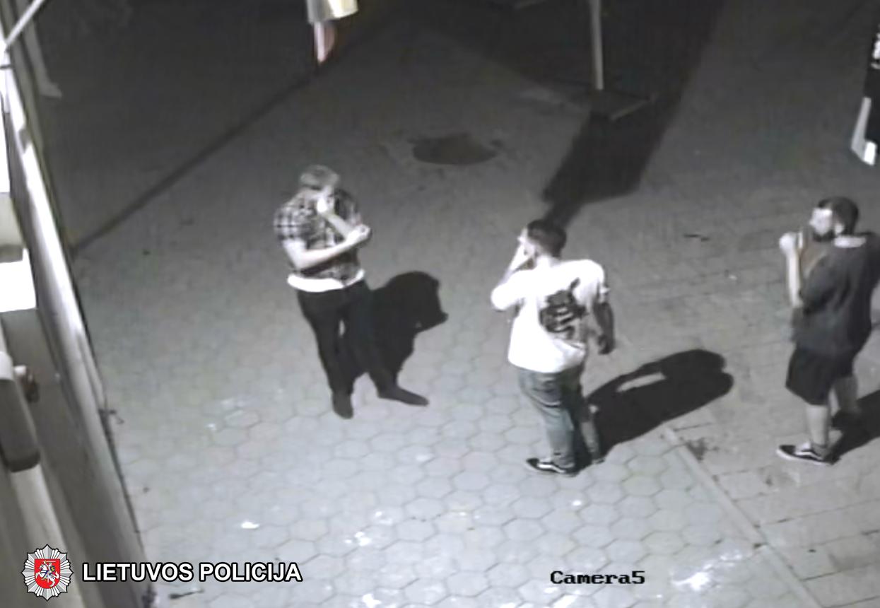 Vilniaus policija ieško vėliavą išniekinusių asmenų