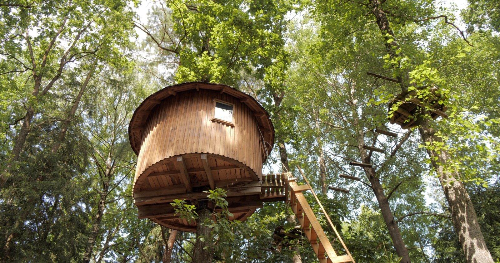 Egzotiška nakvynė medyje: kam vykti į Balį, jei galima išbandyti Tauragėje