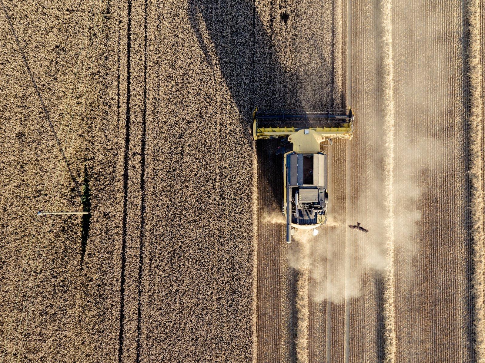 Javapjūtė: ūkininkai vėl pjauna ne tik javus, bet ir elektros stulpus