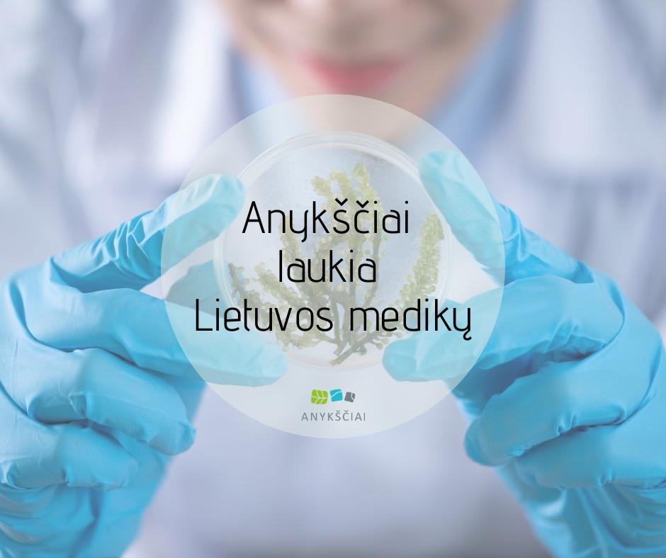 Anykščiai laukia Lietuvos medikų