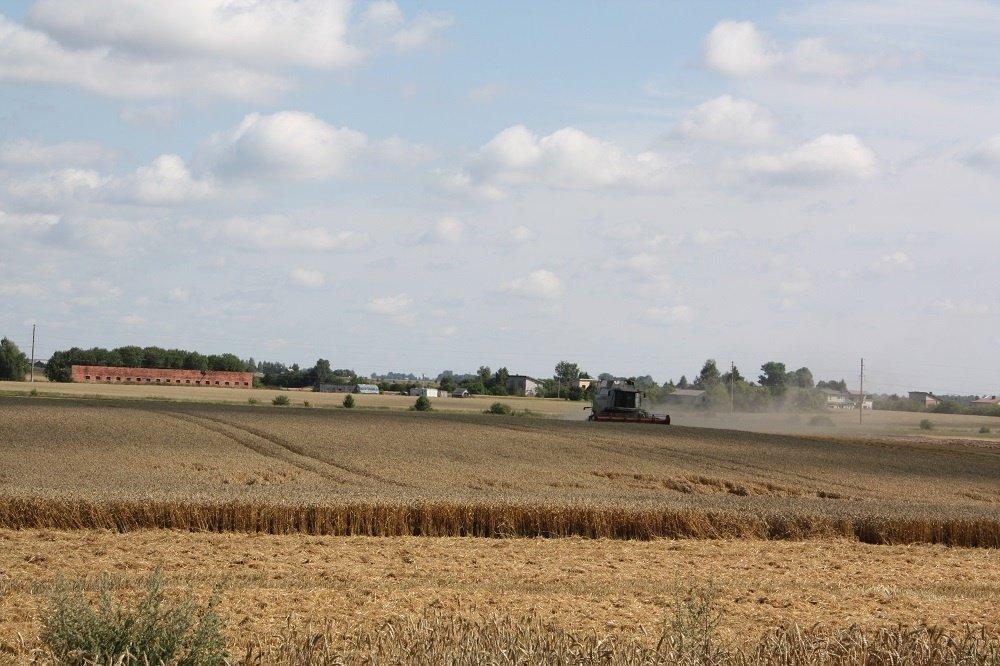 Kombainų gaisrai Alytaus rajono ūkininkų negąsdina