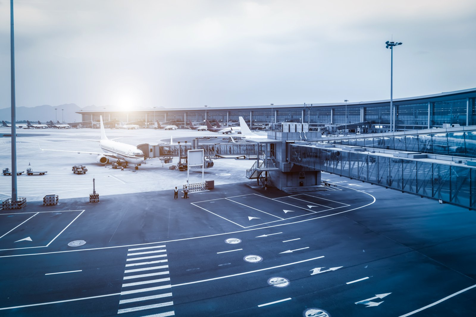 Ministerija svarsto Lietuvai galimybę turėti nacionalines avialinijas