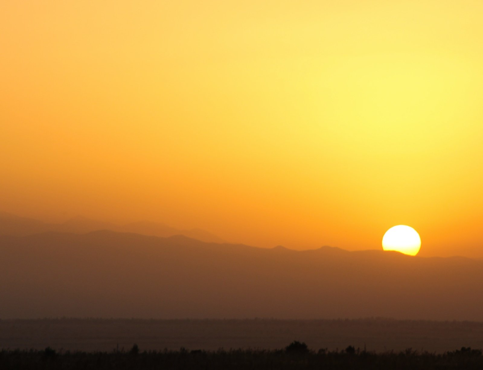 Ši vasara šiauriniame Žemės pusrutulyje buvo karščiausia istorijoje