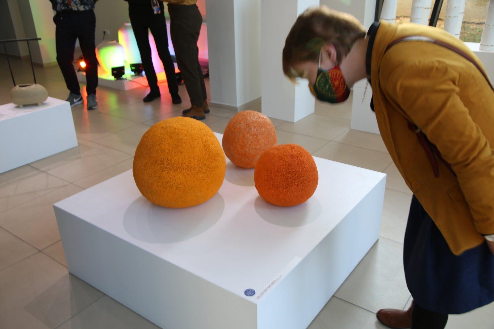 Į Panevėžį pirmą kartą atkeliavo Vilniaus keramikos meno bienalė