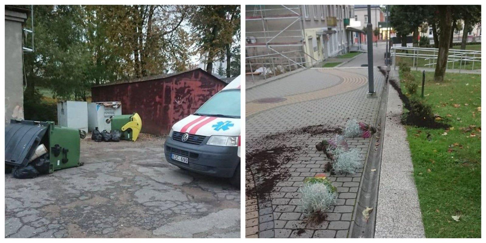 Kuršėnų ligoninės kieme siautėjo vandalai