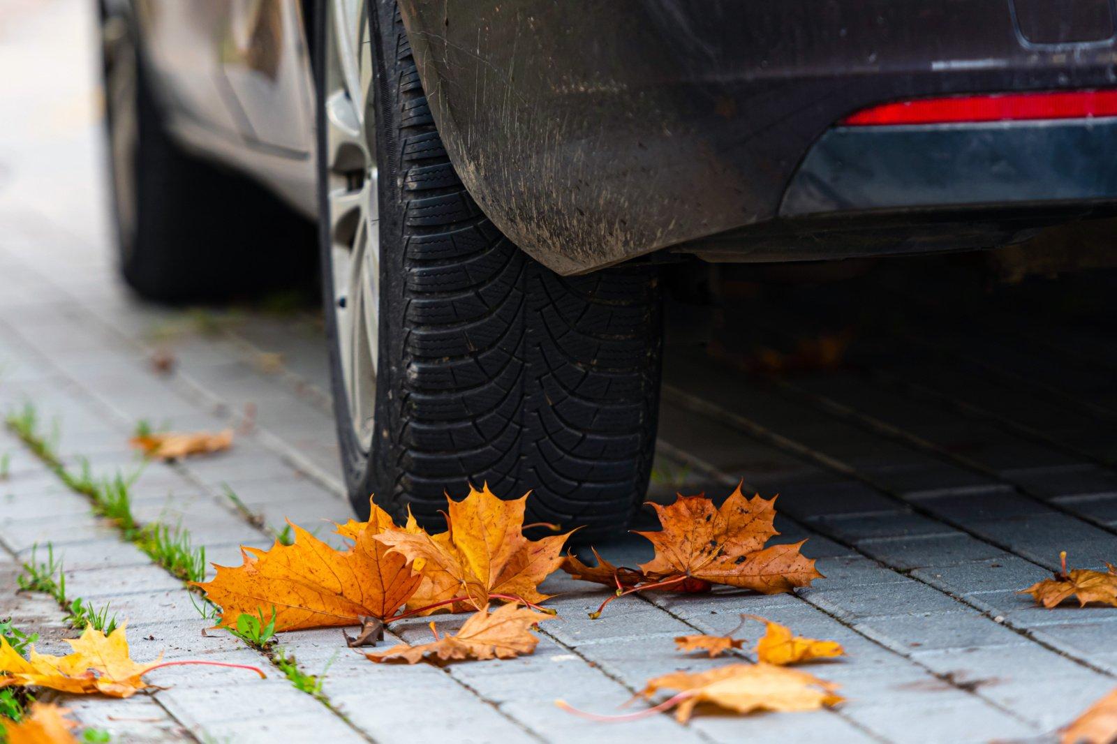 Mažėja leistinas greitis automagistralėse, jau galima važiuoti su dygliuotomis padangomis