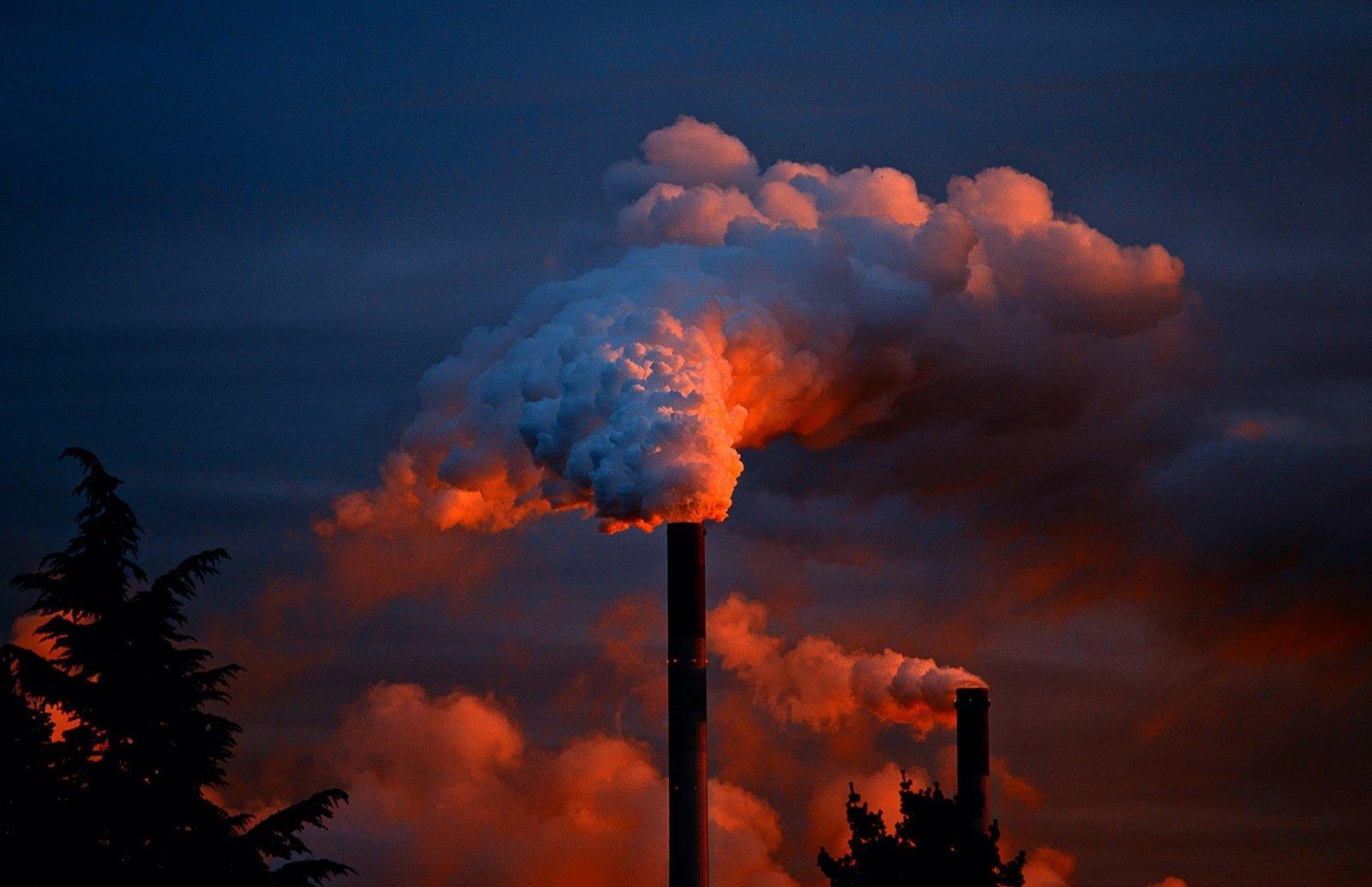 Nustatyta, kad oro tarša gali pakenkti žmogaus uoslei