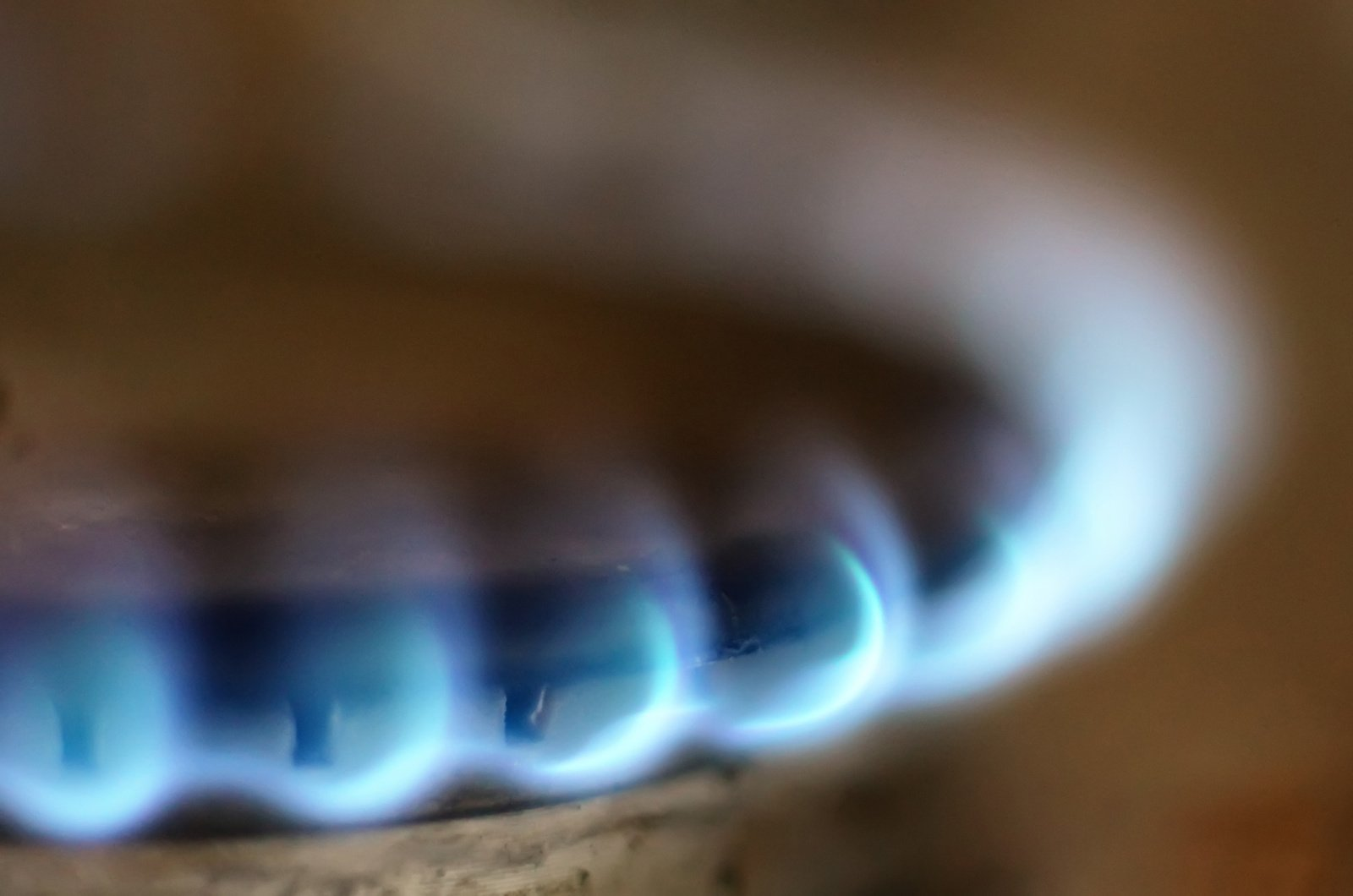 Ekonomistas M. Dubnikovas: elektros ir dujų kainos bus dar didesnės