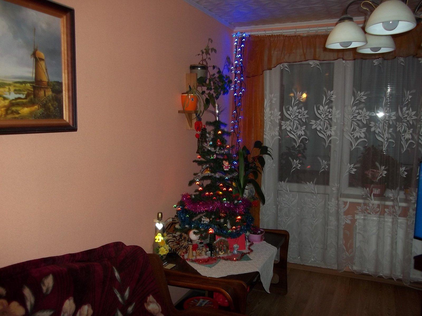 Kalėdinės šventės su karantino skydu