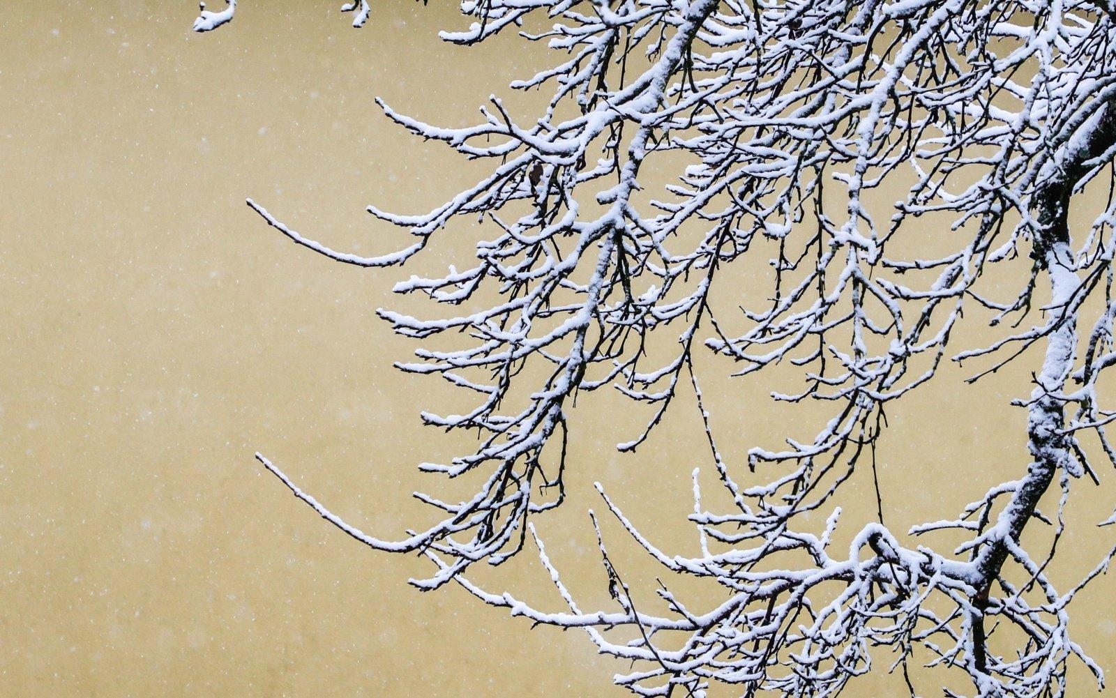 Meteorologai įspėja: smogs stingdantis šaltis, temperatūra kris iki –23°C