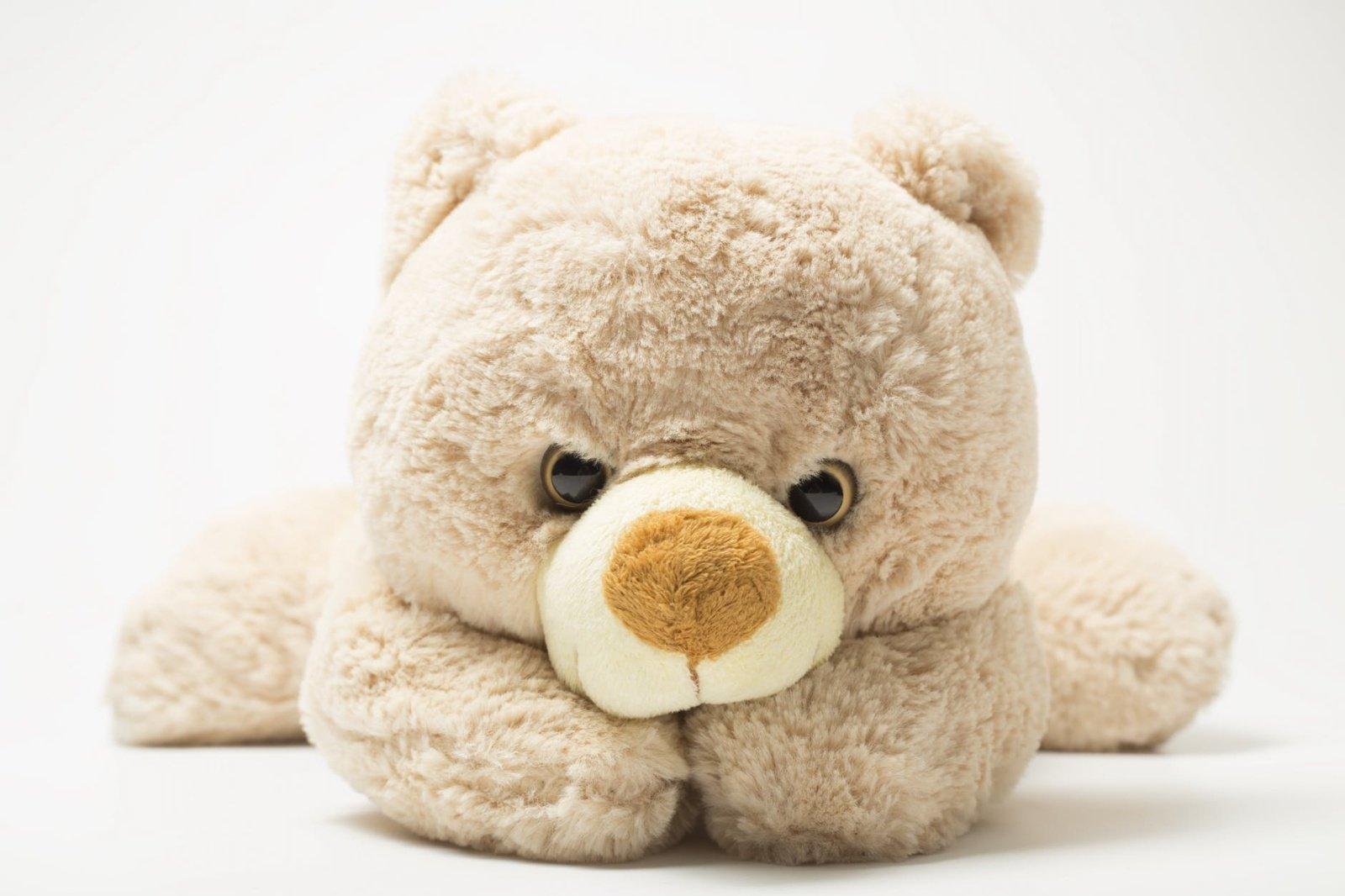 Dideli meškinai: kaip paplito vardas Tedis ir kodėl tai gera dovana