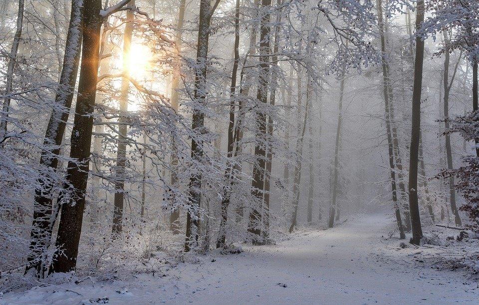 Laukiantiems daugiau sniego – geros žinios