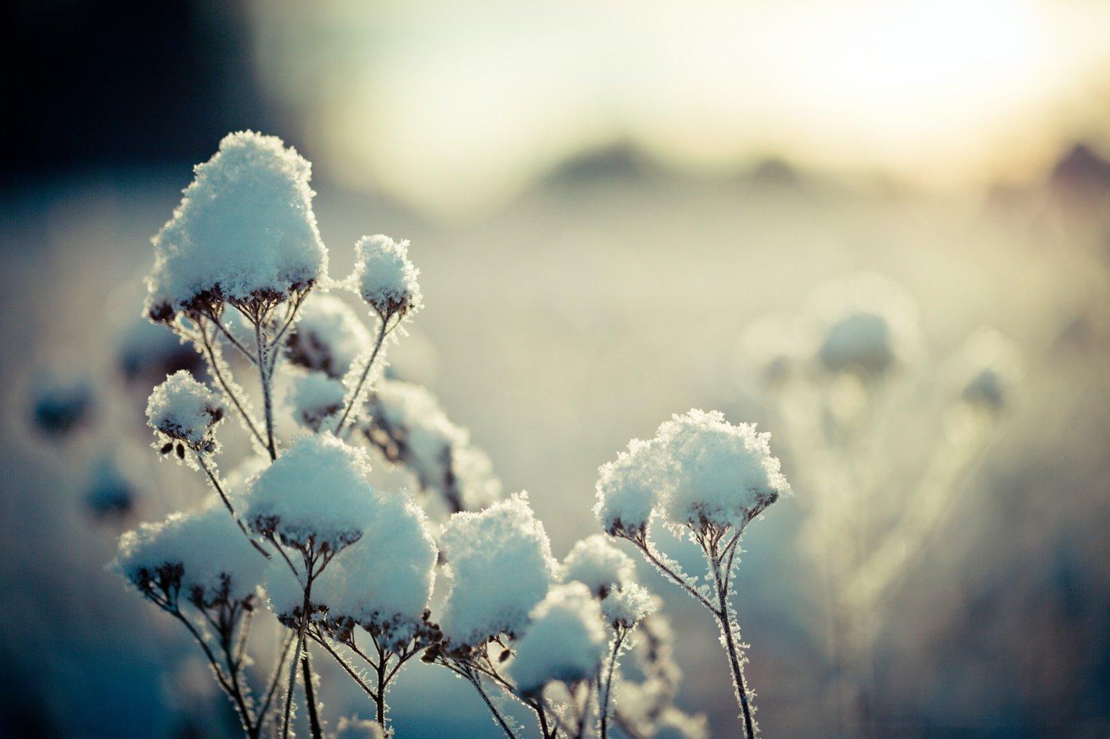 Orai bus žiemiški: kasdien snigs, atkeliaus ir šaltis