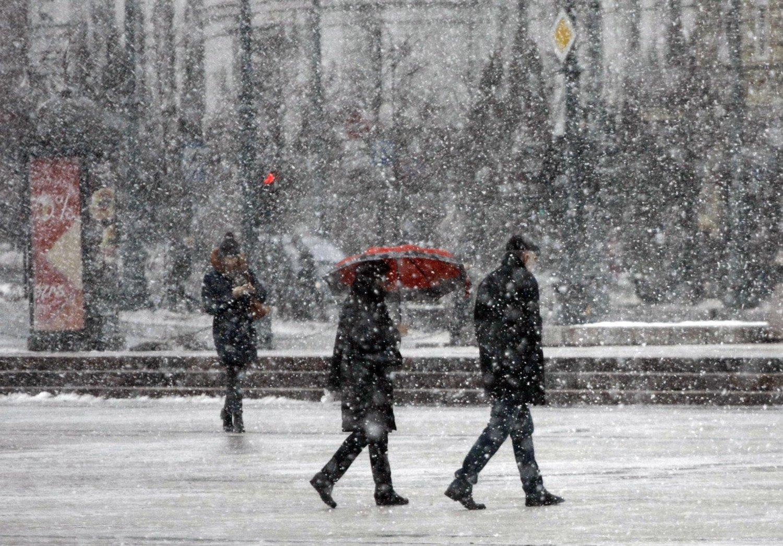 Pavasaris prasidės šiluma, tačiau žiema dar neilgam sugrįš