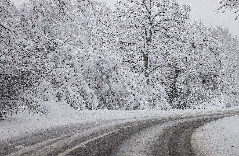 Kelininkai perspėja: rajoniniai keliai išlieka slidūs, rytą eismo sąlygas vietomis sunkins rūkas