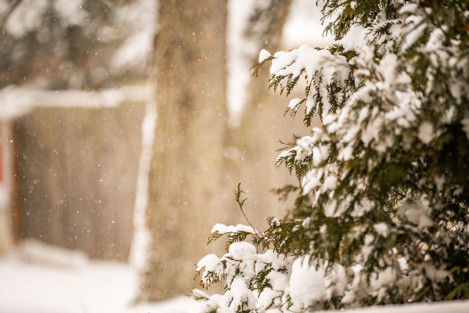 Meteorologai: Lietuvoje iškritęs gausus sniegas nėra rekordinis