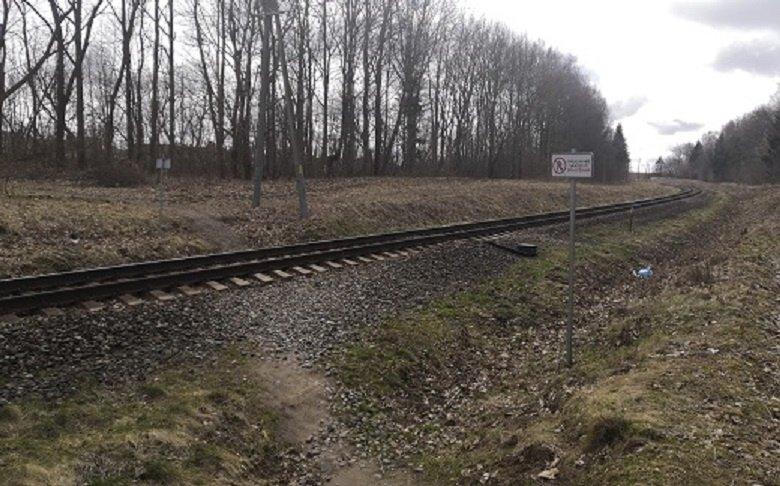 Nesaugus geležinkelio pervažos ruožas bus įtrauktas į stočių ir tarpstočių aptvėrimo programą