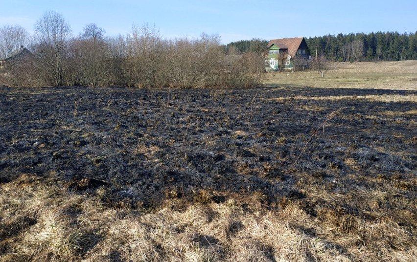 Institucijos pasirengusios kovoti su žolės degintojais