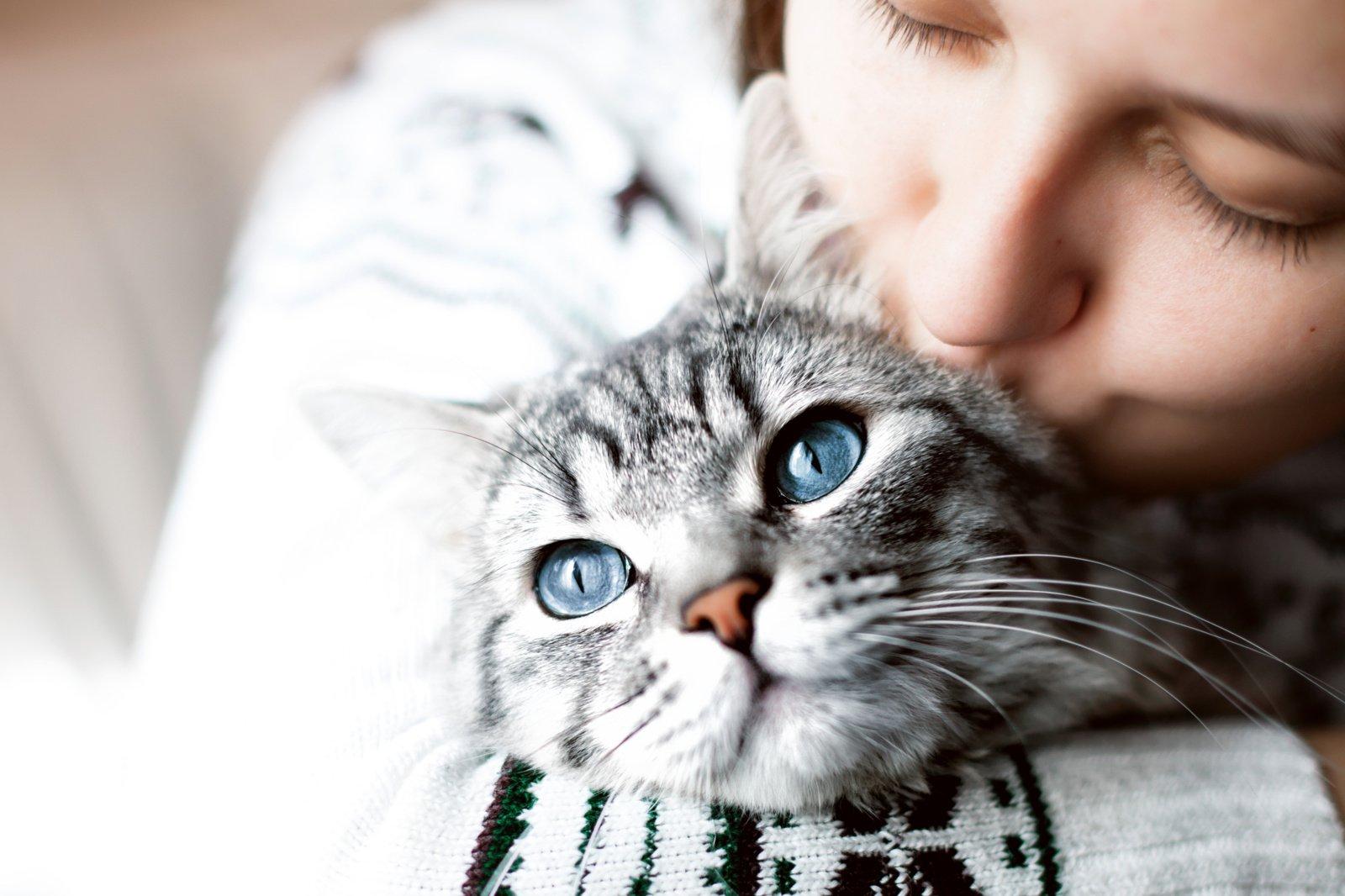 Vėžiu susirgusi moteris teigia, kad gyvybę jai išgelbėjo katinas