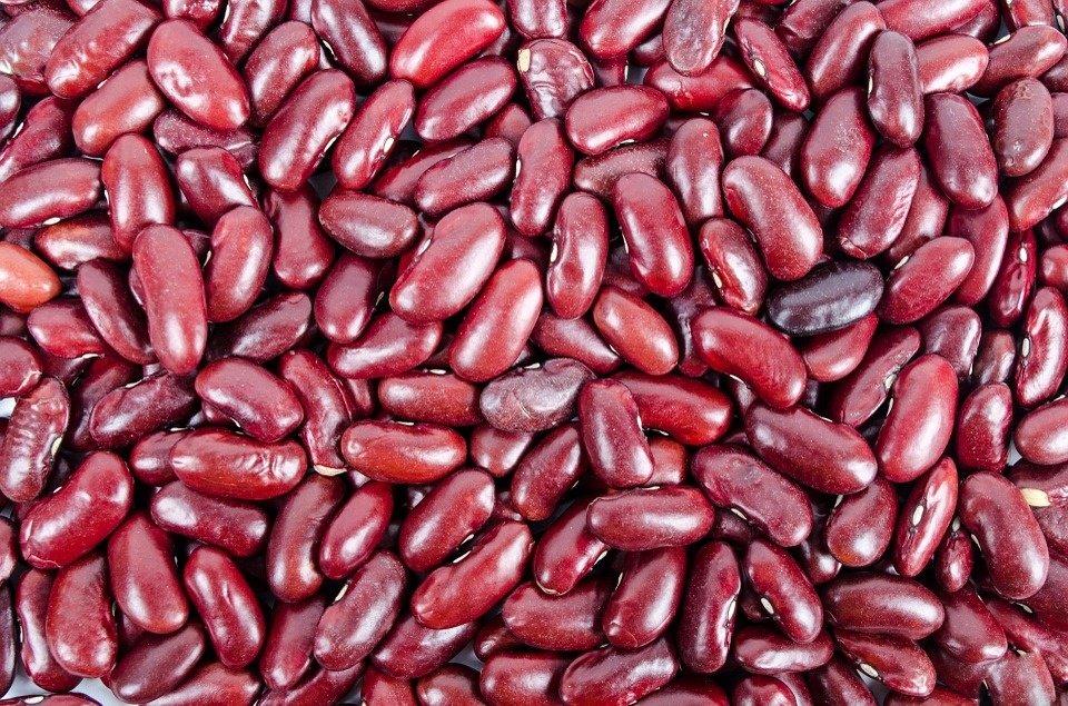 Ar žinojote, kad raudonosios pupelės iš tikrųjų yra toksiškos?
