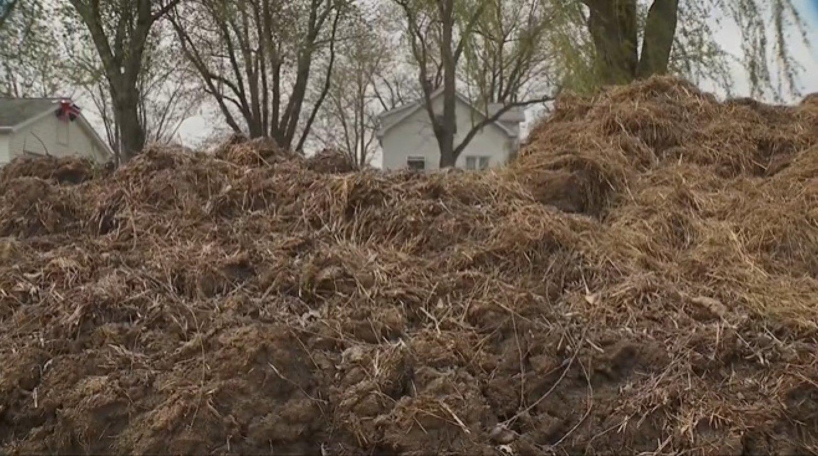 Geriau nesipykti: vyras nuo kaimyno atsitvėrė mėšlo tvora (vaizdo įrašas)