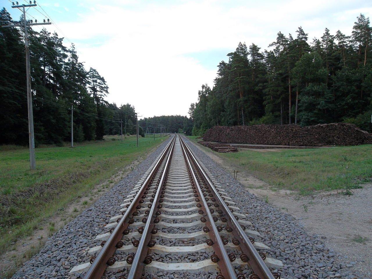 """Kaišiadorių rajono meras: """"Rail Baltica"""" leis gyventojams greičiau pasiekti didžiuosius miestus, bet yra ir neatsakytų klausimų"""