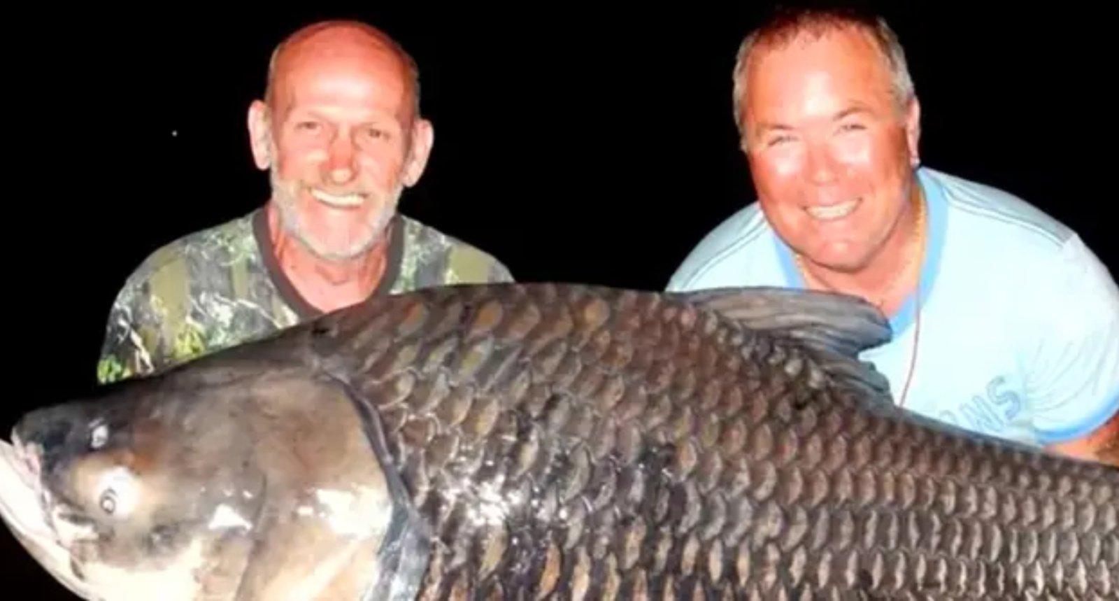 Neįprastu būdu pagerbę draugo atminimą vyrai sugavo 82 kilogramų karpį