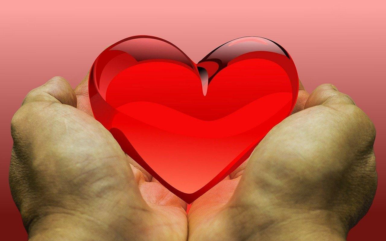 Penki donorinių organų laukiantys žmonės sulaukė gerų žinių