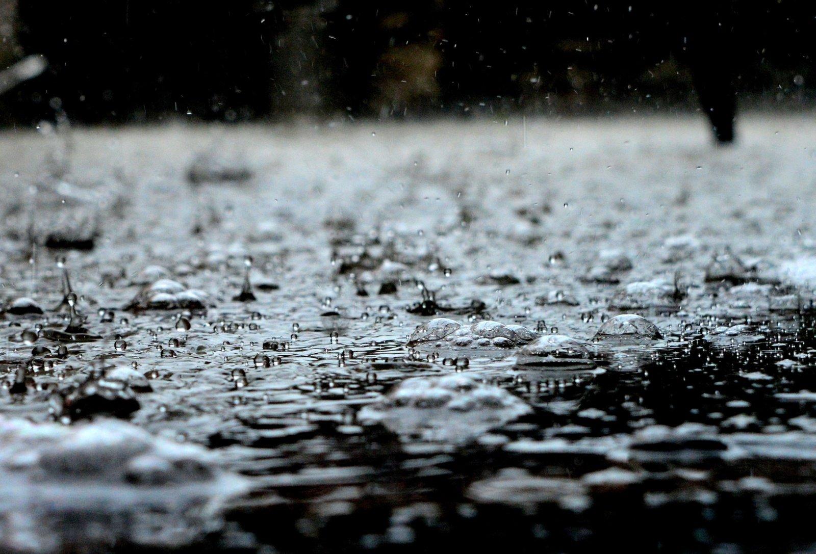 Dėl stipraus lietaus savaitgalį neveiks dalis Kauno zoologijos sodo