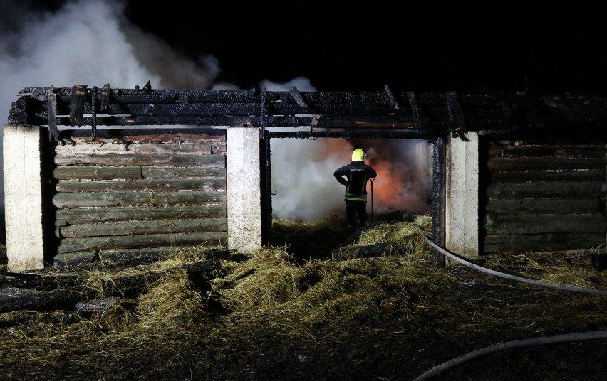 Peskojų kaime gaisre žuvo žmogus