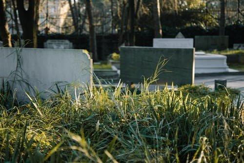 Trakų rajone, prie kapinaičių, rastos žmogaus kaukolės dalys